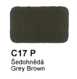 C17 P Šedohnědá Agama