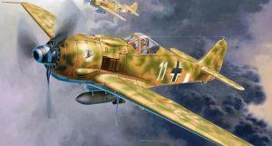 """Focke Wulf 190 F-8 & Bv 246 """"Hagelkorn"""""""